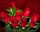 Величието на цветята