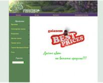 ГЕЯСЕМ, Електронен магазин за луковици и семена за цветя и зеленчуци